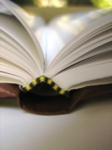 book.01